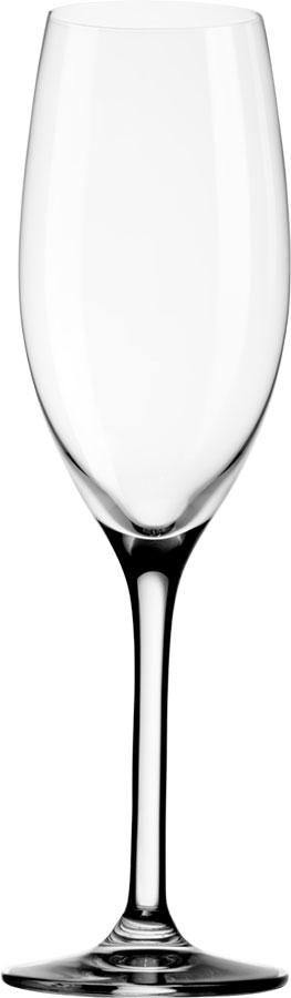 Champagne-glass_Mio_M600